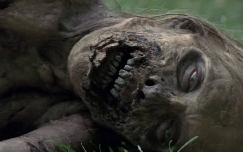 the walking dead bicycle girl 790x494 - The Walking Dead Bicycle Girl Time Lapse