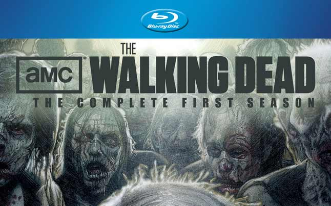the walking dead collectors edition - The Walking Dead Season 1 Collector's Edition