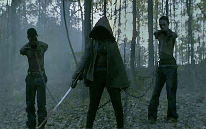 michonne sesaon 2 finale 790x494 - Michonne To Be Played By Danai Gurira In Season 3