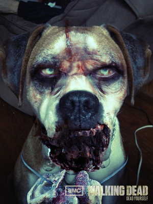 dog - Dead Yourself Picture App - Turn Yourself Into Your Own Zombie