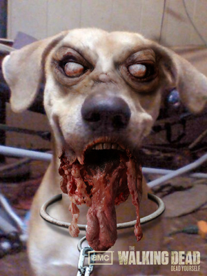 zombie dog face - Dead Yourself Picture App - Turn Yourself Into Your Own Zombie