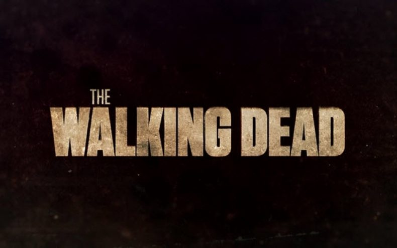the walking dead 790x494 - The Walking Dead Gets Three New Regulars For Season 4