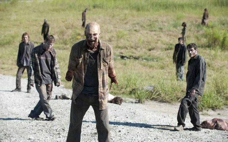 twd 311 790x494 - Names and Details About The Walking Dead Spinoff Characters Leaked