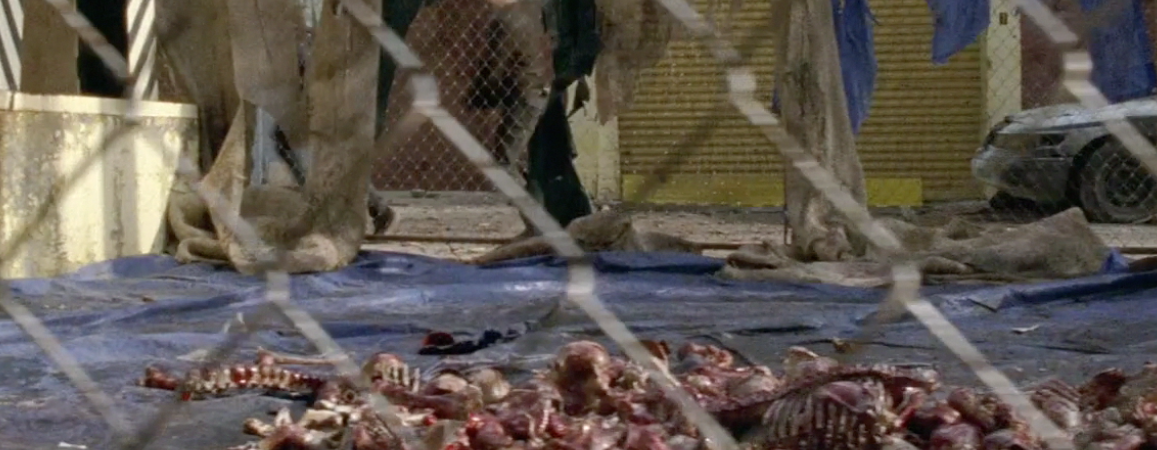 the walking dead terminus bones - Scott Gimple: Maybe the Terminus Residents Aren't Cannibals