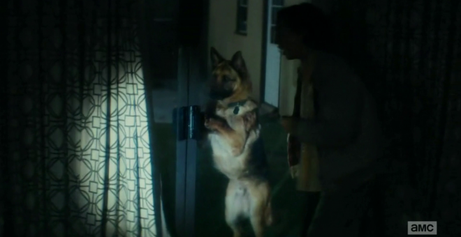 "vlcsnap 2015 09 17 20h23m37s173 660x340 - Fear The Walking Dead ""The Dog"" Recap"
