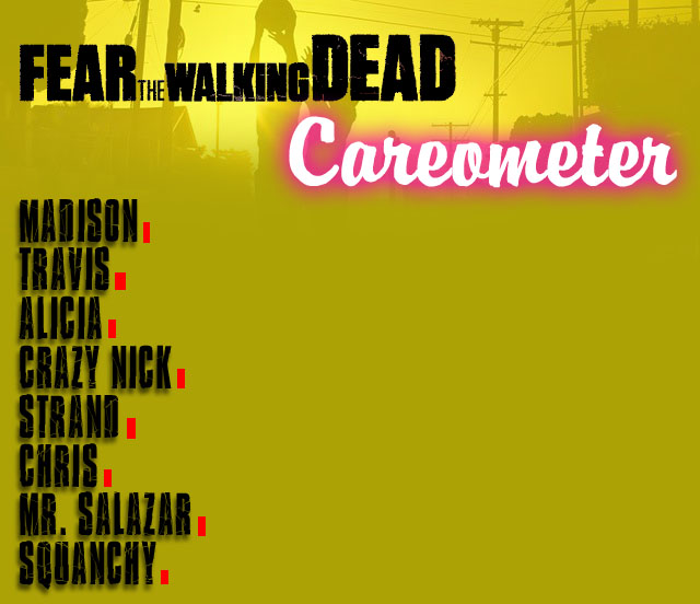 careometer2-1-1