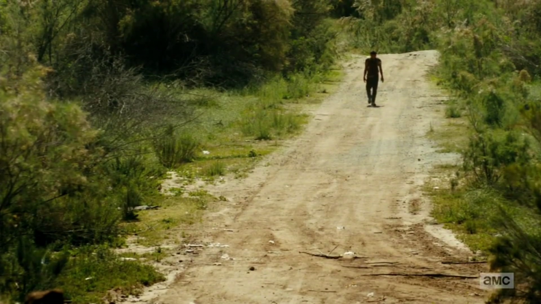 "vlcsnap 2016 08 22 13h25m51s31 790x444 - Fear The Walking Dead Recap: ""Grotesque"""