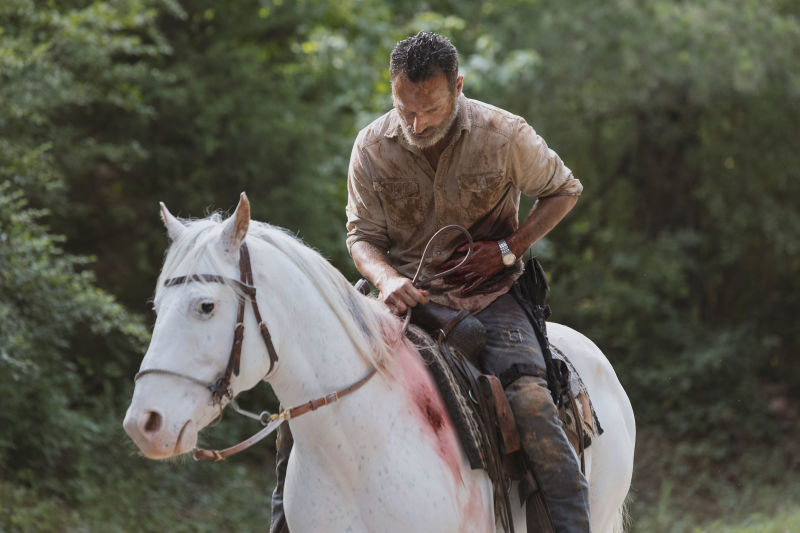 tmwz4faysupcuvkuer55 - Photos From Andrew Lincoln's Last TWD Episode
